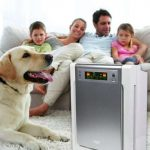 best-air-purifier-for-pets-allergies